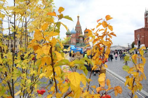 pokrovsiy-sobor-khram-vasiliya-blazhennogo-vidy-moskvy.jpg